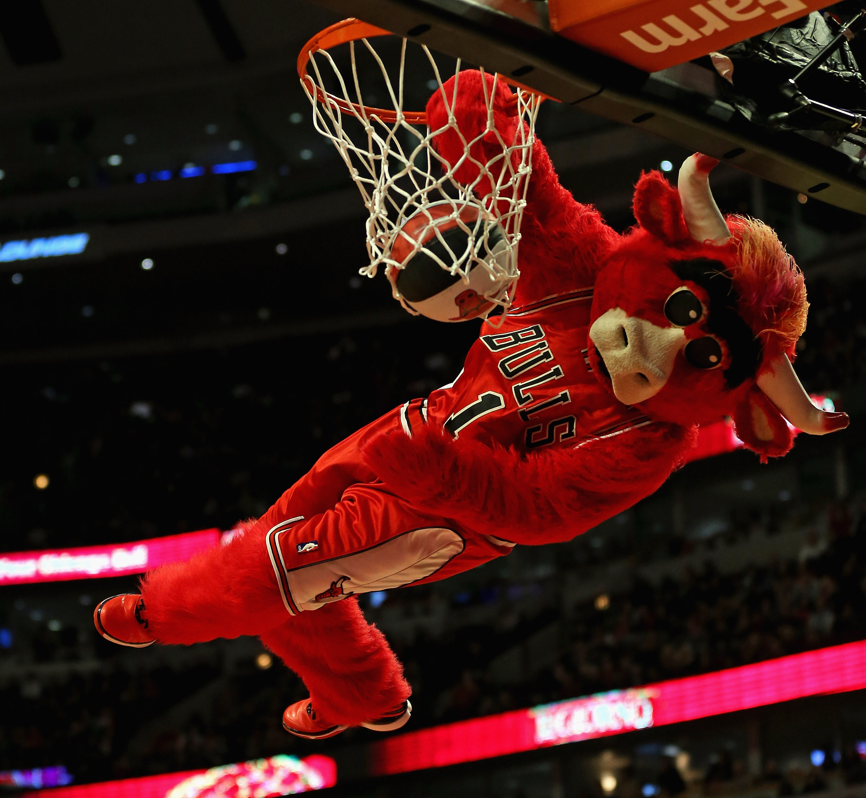 Benny the Bull (Chicago Bulls)
