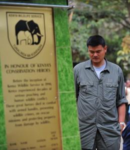 Der Tierschutz ist für Yao Ming eine Herzensangelegenheit (Foto: Getty Images. Titelbild: Getty Images)