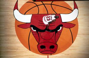 Michael Jordan – Forever a Bull!